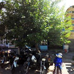 فروشگاه موتور سیکلت متین